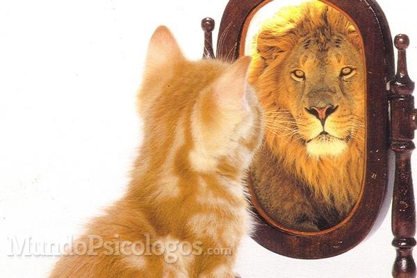 La autoestima