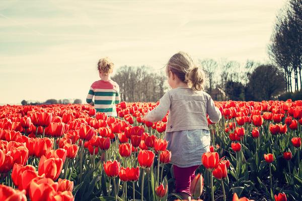 ¿Cómo fomentar la autoestima de los niños?