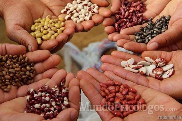 ¿Qué tipo de semillas te gustaría plantar en tus hijos?