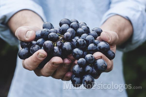 ¿Por qué no nos gusta la fruta fea?