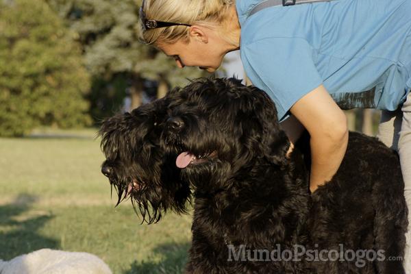 Los animales de compañía pueden llegar a mejorar la situación emocional e incluso física de personas con determinadas patologías. Foto de Morguefile.