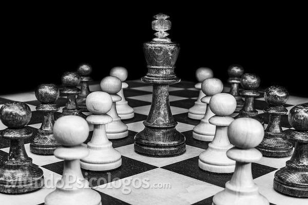 ¿Inteligencia es igual a liderazgo?