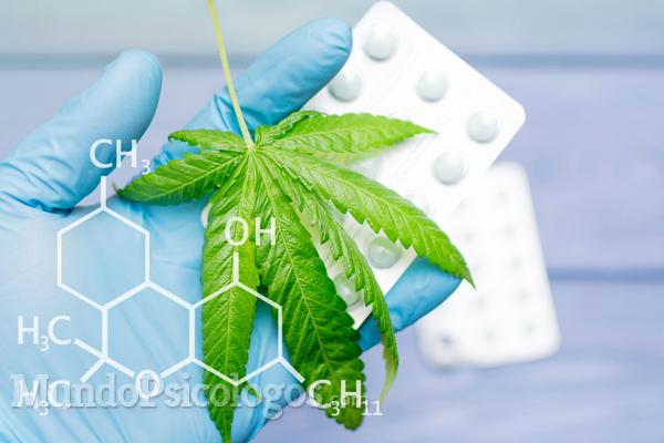 ¿Hay diferencia entre uso recreativo y uso medicinal del cannabis?